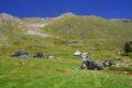 Góry Bjelasica i Park Narodowy Biogradska Gora