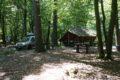Parking leśny Adelina