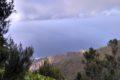 Rezerwat El Pijaral