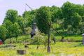 Cerkiew Intrarea în Biserică w Dobricul Lăpuşului