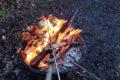 Szaszłyk z ogniska