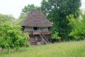 Skansen w Curtișoara