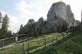 Zamek Tustań