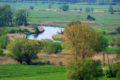 Rezerwat przyrody Krzyżanowice