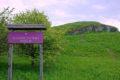 Rezerwat przyrody Przęślin