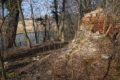 Ruiny zamku na wodzie w Jelczu