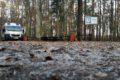 Parking Leśny Namysłów