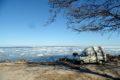 Logi nad Zatoką Fińską
