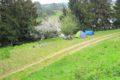 Stańczyki, niedaleko jeziora Dobellus