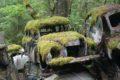 Cmentarzysko starych samochodów