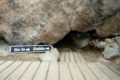 Niedźwiedzie Gniazdo (Bear's Nest)