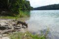 Jezioro Duża Czerwonka, Nowa Wieś