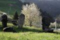 Stećci w Monjići – nekropolia Kaurlaš