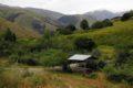 Wiatowisko za wsią Hankavan