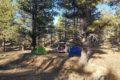 Biwak las przy Bryce National Park