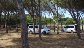 Samochody dzikich turystów