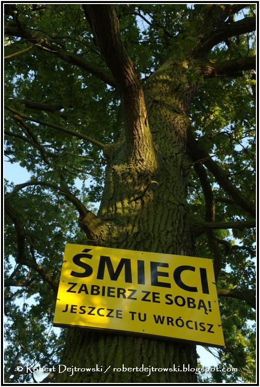W miejscach gdzie stają samochody są na drzewach tabliczki